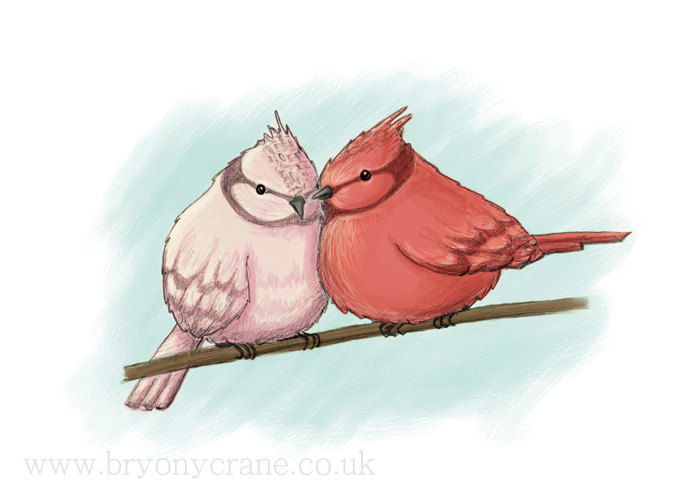 Illustrated Bird Greetings Card - Two Birds - Pink Red Blue - product image