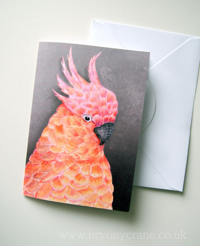 Illustrated Greetings Card - Cockatoo - product images