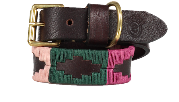 Rhubarb Polo Dog Collar - 2.5cm - product image