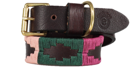 Fino,Rhubarb,Polo,Dog,Collar,-,2cm, pink, green, fino, brass buckle, dog collar, dog lead, brass, polo dog lead, polo dog collar, Pampeano, Pampa, Polo Belt, Belt, Polo Belts, brown leather, Buenos Aires, Gaucho, Gaucho Belt, Gaucho Belts, Leather Belt, Argentine Belts, Argentine B