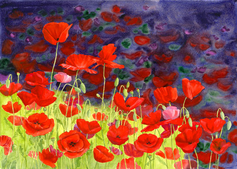 May,Poppies,Print,Red poppies, field of poppies, poppy, flower, green, purple, watercolor