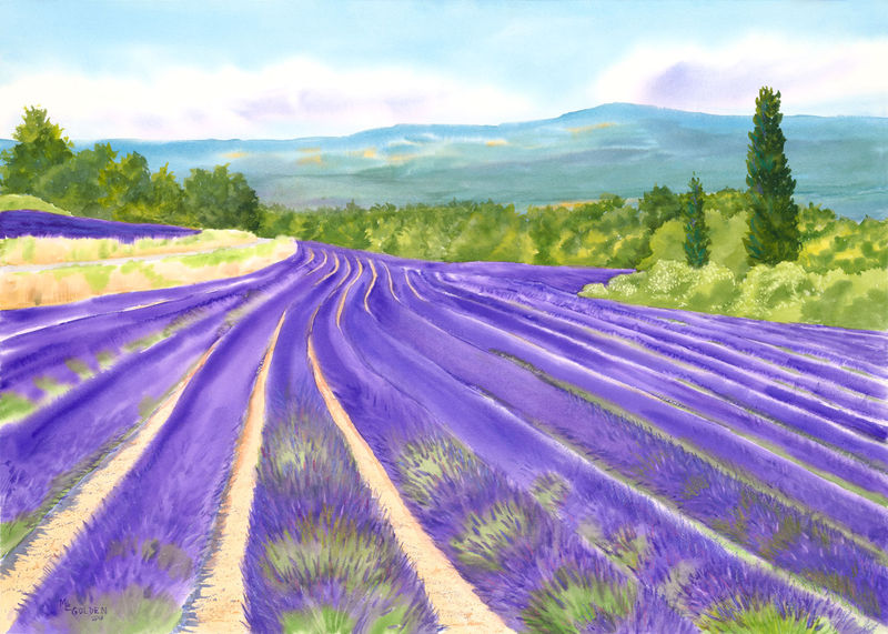 Roussillon Lavender Field - product images