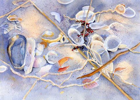 Sunset,Shells, shadows, beach, sunset, Bald Head Island, coastal beach decor, broken shells