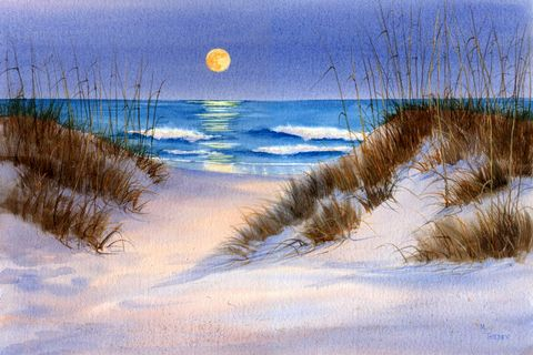 Lady,Moon, Wrightsville Beach, moonlit dunes, ocean at night, Mary Ellen Golden