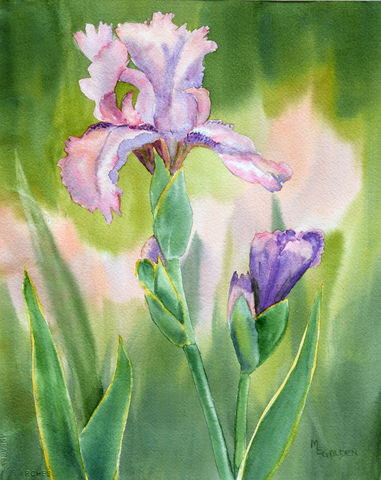 Colors,of,Spring,4,Watercolor print, Iris painting, lavender, peach, giclee print, floral home decor, over the bed print