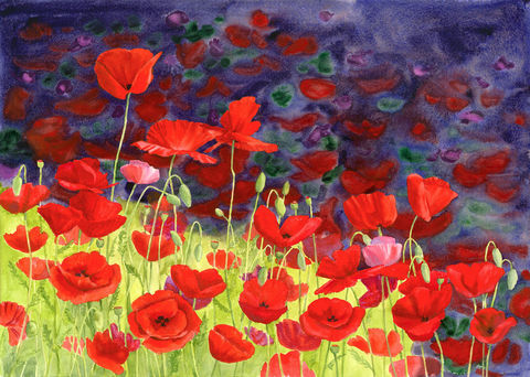 May,Poppies,Flowers, poppies, red, purple, watercolor original, floral, full sheet,