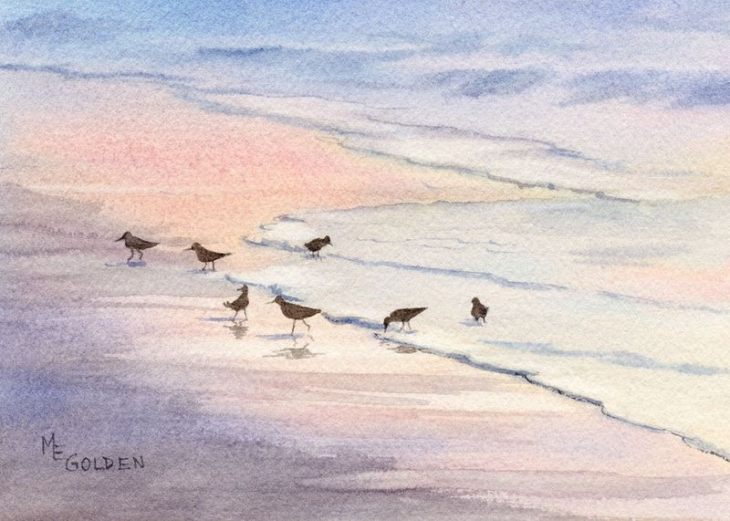 Evenglow sandpipers at the edge of the sea - product images