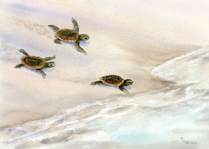 Tracks in the Sand Sea Turtle Beach Print from Watercolor Painting - product images