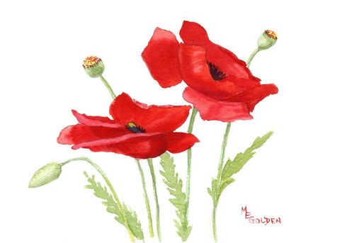 Small,Poppies,1,Art,Print,Giclee,watercolor,flowers,poppies,red,cards,giclee_print,paper,ink