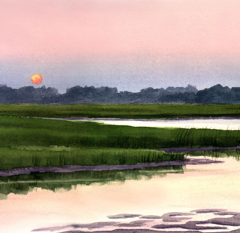 Sunset Marsh - product images  of