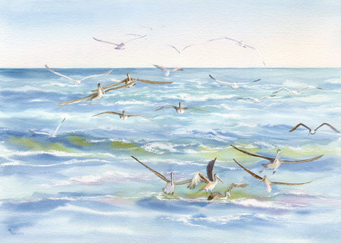 Wake,Behind,the,Ferry,with,Pelicans,and,Gulls,Fishing,Art,Print,Giclee,Coastal beach Decor, Pelicans,Pamlico_sound,gulls,fishing,ferry_wake,seascape,seashore,beach_painting,foam,wings,inks,watercolor paper