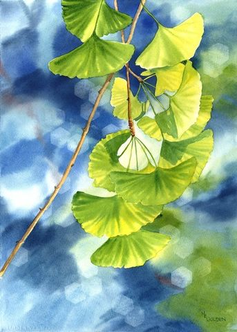 Ginkgo,leaves,against,a,blue,background,Art,Print,Giclee,painting,watercolor,landscape,green,ginkgo,tree,home_decor,nature,arches hotpress watercolor paper,inks