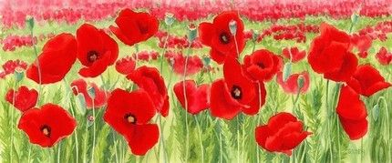 Poppies,Art,Print,Giclee,paper,ink,poppies,red,flowers,long print,wildflowers,green