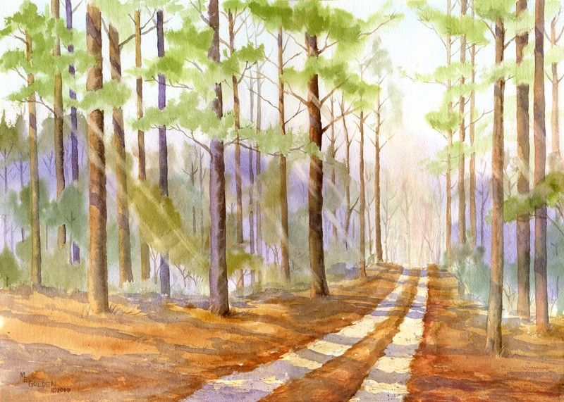 The Road Back Home Through a Pine Forest giclée print - product images