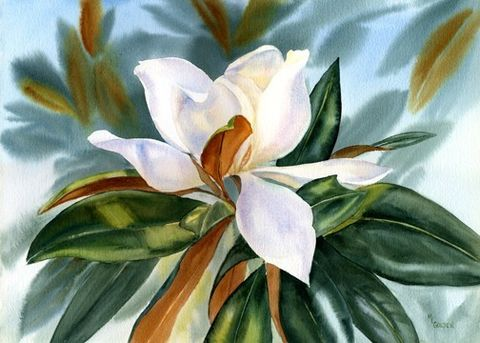 Magnolia,blossom,southern,white,flower,Art,Print,Giclee,painting,watercolor,magnolia,ink,watercolor paper
