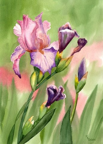 Colors,of,Spring,Art,Print,Giclee,painting,watercolor,flowers,iris,peach,lavender,green,inks,watercolor paper