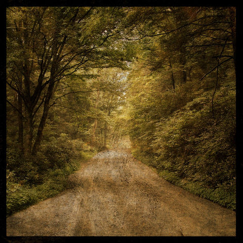 Flannery,Fork,Road,8,in,x,Altered,Photograph,Art,Photography,Digital,surreal,nature,moody,texture,green,trees,road,paper,ink