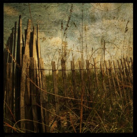 Sand,Fence,No.,1,-,8,in,x,Altered,Photograph,Art,Photography,Surreal,digital,brown,texture,moody,island,ocean,marsh,seaside,fence,sand,paper,ink