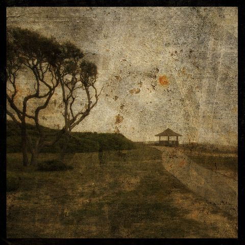Sandswept,No.,4,-,8,in,x,Altered,Photograph,Art,Photography,Surreal,digital,brown,texture,moody,island,ocean,seaside,sand,tree,fort_fisher,gazebo,paper,ink