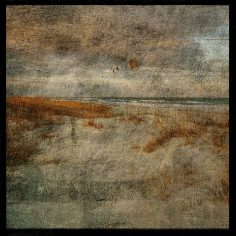Masonboro,Island,No.,3,-,8,in,x,Altered,Photograph,Art,Photography,Nature,surreal,digital,trees,texture,moody,sea,ocean,dune,sea_oats,gold,paper,ink