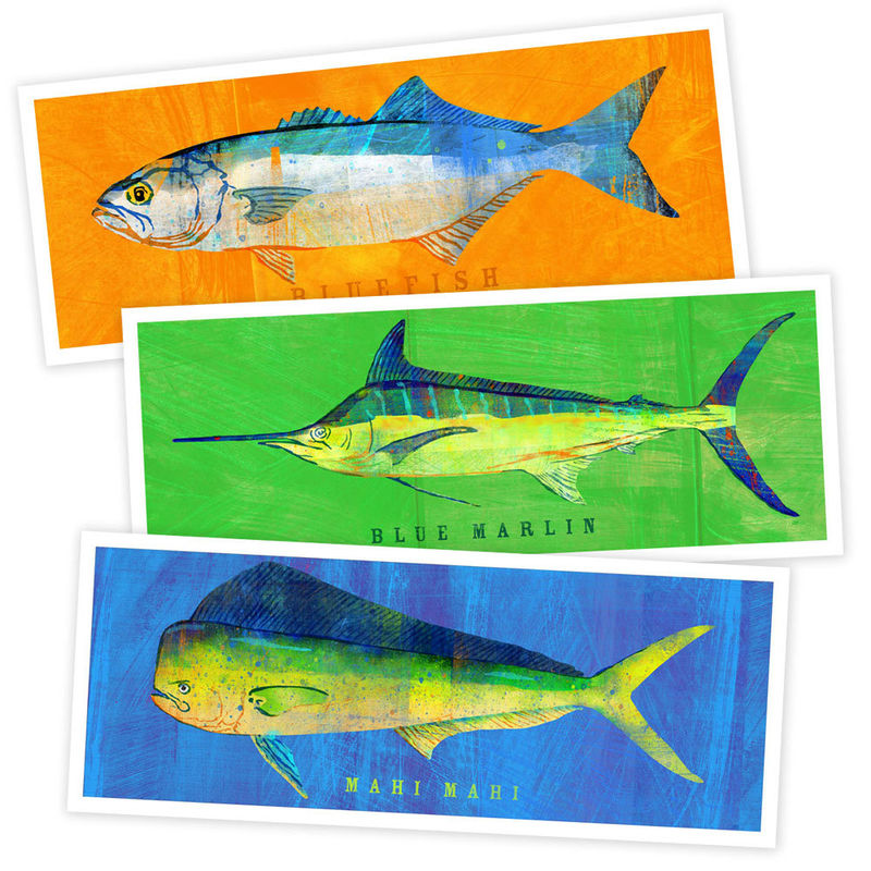 Fish Artwork - 3 Medium Fishies - Pick Your Set of 3 Prints 4 in x 11 in Saltwater Fish Art - product images  of