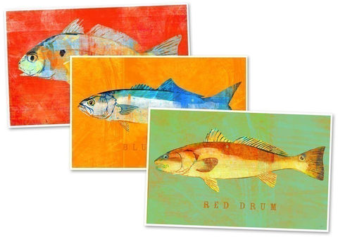 Fish,Artwork,-,3,Little,Fishies,Set,of,Prints,4,in,x,6,Art,saltwater,spot,drum,red,bluefish,print,blue,orange,fish_artwork,paper