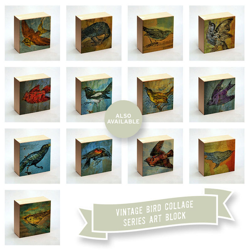 Warbler Art Print No. 1 Box - 4 in x 4 in - Pick the Print - Vintage illustration inspired art - product images  of