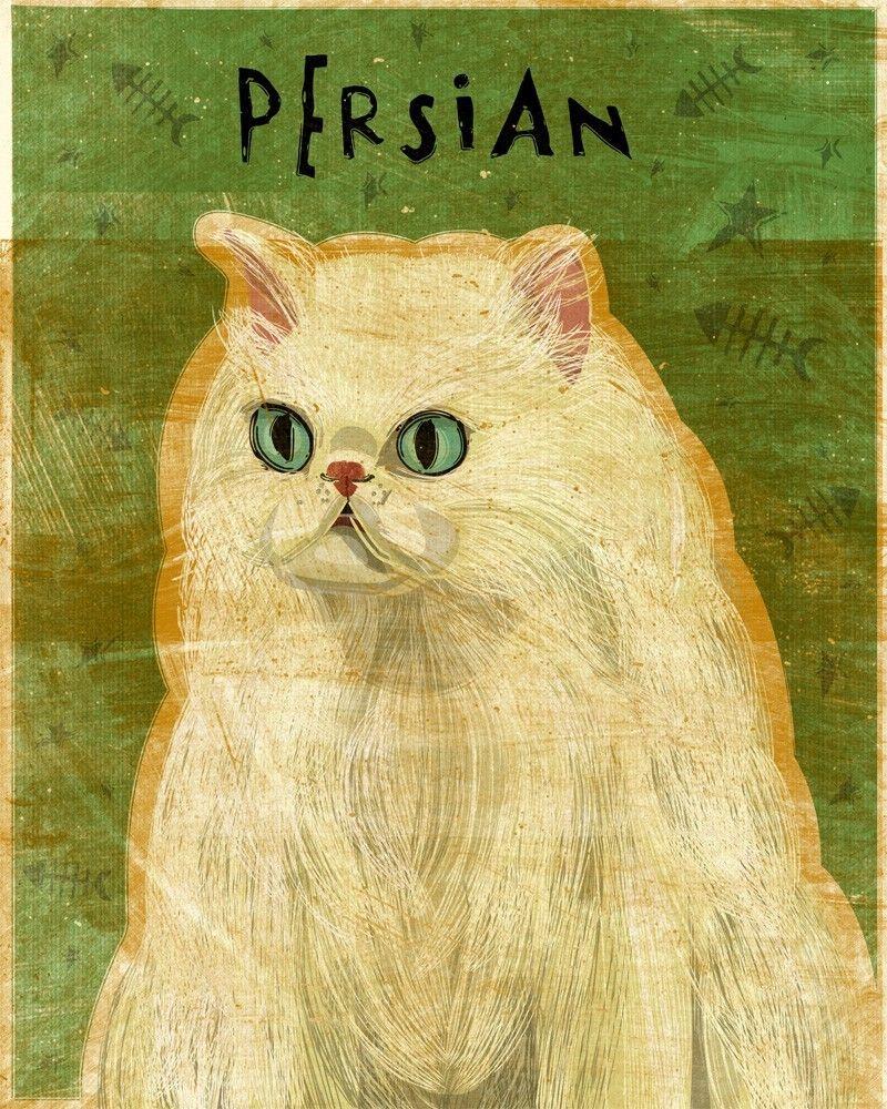 White Persian Print 8 In X 10 In