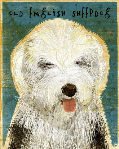 Old,English,Sheepdog,-,Dog,Art,Print,8,in,x,10,Illustration,whimsical,cute,animals,dog_art,pet,puppy,old_english_sheepdog,paper,ink