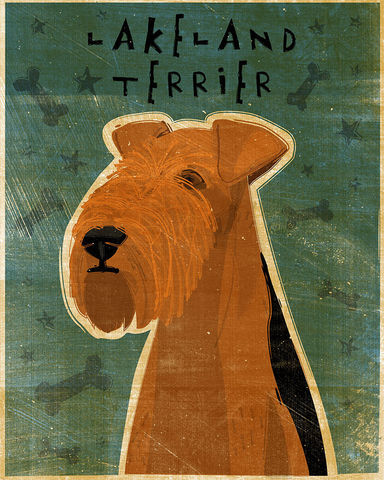 Lakeland,Terrier,Print,(Fido,Series),8,x,10,Art,Illustration,digital,whimsical,cute,dog,animals,animal,lakeland_terrier,paper,ink