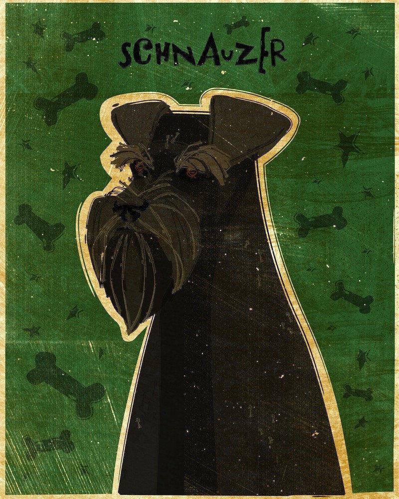 Schnauzer Art Print Black 8 X 10