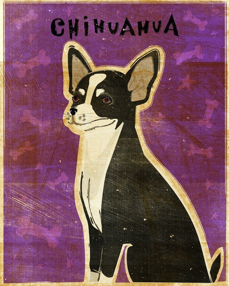 Black And White Chihuahua Print 8 In X 10 In