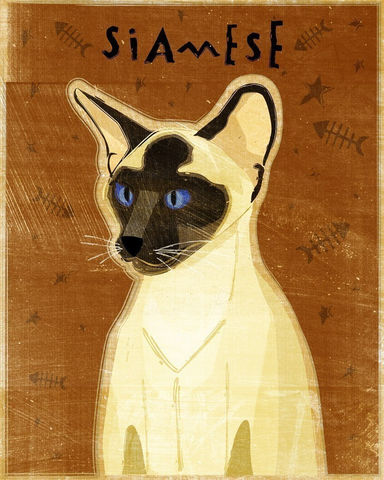Seal,Point,Siamese,Cat,Print,8,in,x,10,Art,Illustration,digital,whimsical,cute,animals,animal,cat,siamese,paper,ink