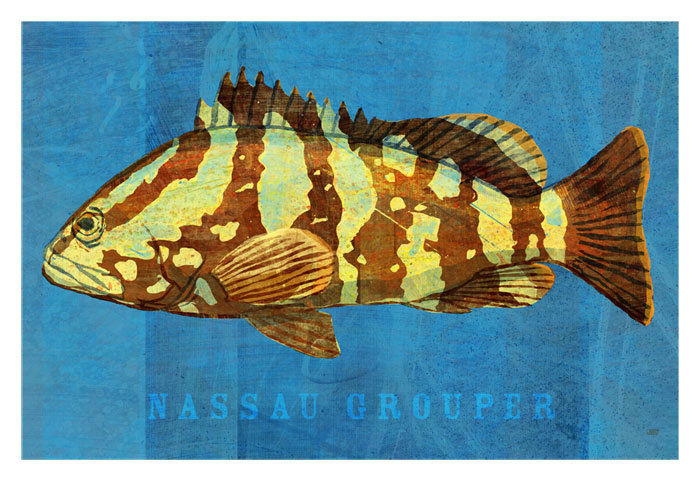 Saltwater Fish Art - 3 Little Fishies Set Number 2- Set of 3 Prints 4 in x 6 in - product images  of
