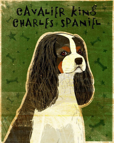 Cavalier,King,Charles,Spaniel,Tri-Color,Print,8,in,x,10,Art,Illustration,digital,whimsical,cute,dog,animals,animal,brown,king_charles,cavalier,spaniel,tri_color,paper,ink