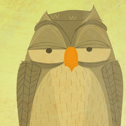 Owl,Print,-,The,Sensible,8.5,in,x,12,Art,Illustration,digital,woodland,critter,johnwgolden,jewelry,children,green,owl_print,Ellen,Sophia_Grace,Rosie,paper,ink