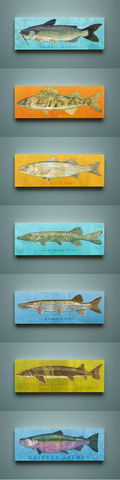 Freshwater,Fish,Art,Series,Large,Block,-,Pick,the,Print,4,in,x,11,Wall,Decor,Fisherman,Gift,Fathers,Day,for,Dad,Digital,Wood_Art_Block,Fish_Art_On_Wood,Fish_Wall_Decor,Fish_Wall_Art,Fish_Wall_Hanging,Fish_Illustration,Fish_Artwork,Funky_Fish_Art,Freshwater_Fish_Art,Fathers_Day_Gift,Gift_For_Dad,Dad_Gift,wood,paper,ink,glue,sealer