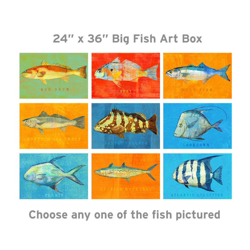 Saltwater Fish Art Series Big Fish Art Box - Pick the Print - 24 in x 36 in Fish Wall Decor Fisherman Gift - Fathers Day Gift - Gift for Dad - product images  of