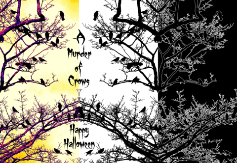 A,Murder,of,Crows,Halloween,Card, halloween card, scary card, spooky card, crows card, greetings card, digitalimaginings, digital image, halloween image