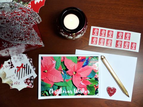 Poinsettia,Profusion,Christmas,Card,christmas card, greeting card, poinsettia plant, red card, traditional christmas, christmas floral card