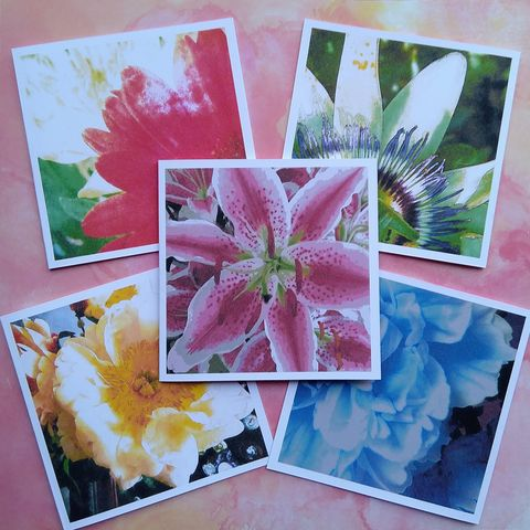 Floral,Notes,,Pack,of,Five,Notecards,pack of floral notecards, floral notes greeting cards, flower cards, digital imaginings,