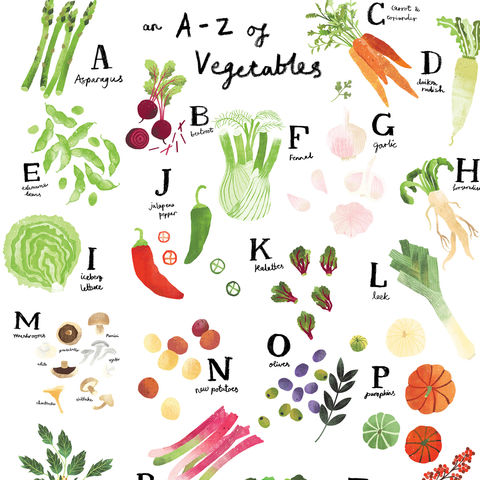 A-Z,of,Vegetables,A4,print,by,Melanie,Chadwick,vegetables, alphabet, kitchen print, a-z, sketchbook, print, plant lovers, botanical, sketchbook drawing, A4 print,