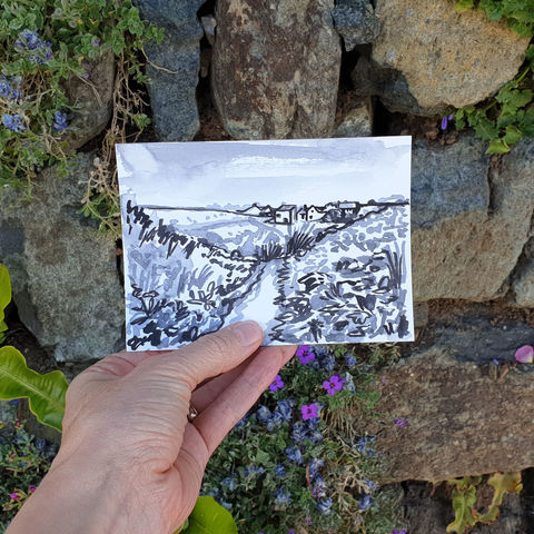 #135/,No.,6,Polpeor,,Fields,,Lizard,Peninsula,polpeor, lizard peninsula, sketch artist, sketchbook, original art, affordable art, mini art, postcard art, art project, artist, cornish art