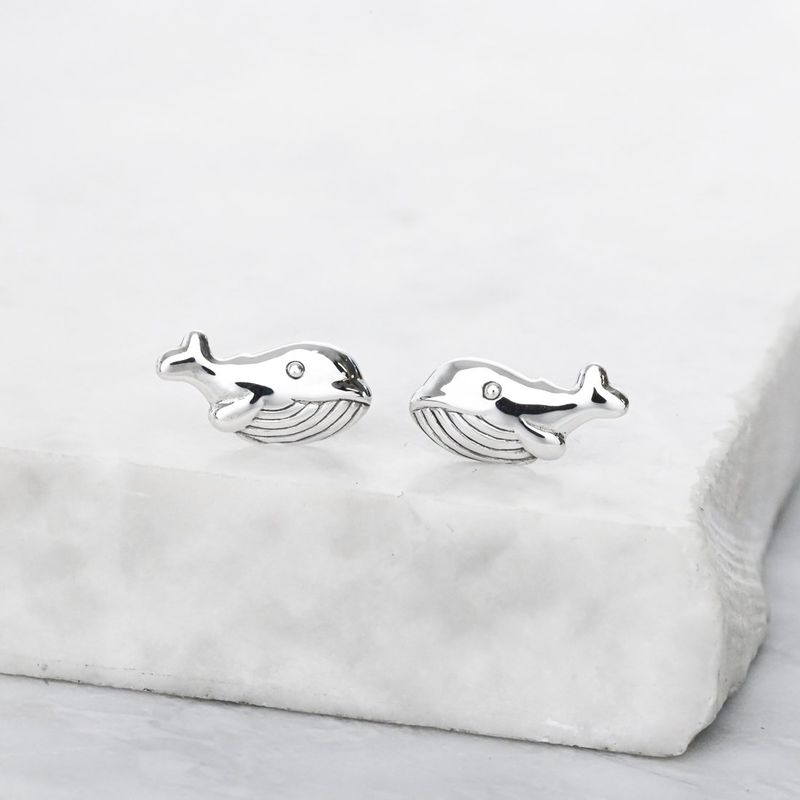 Save the Oceans Sterling Silver Earrings - product image