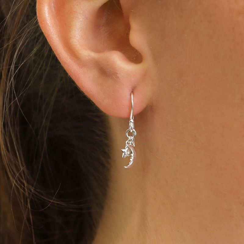 Sterling Silver Astrology Earrings - product image