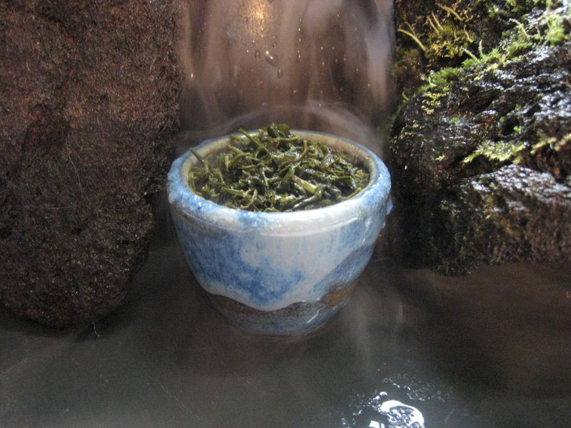 Yun Wu Cloud Mist Loose Green Tea, Camelia sinensis - product images  of