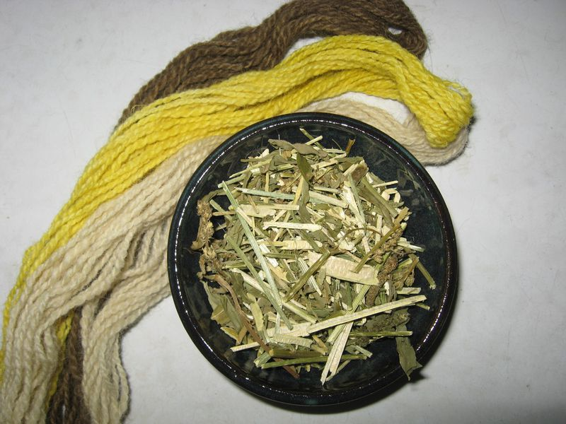 Weld Natural Dye, Reseda luteola, Leaves, Stems, Flowers - product images  of