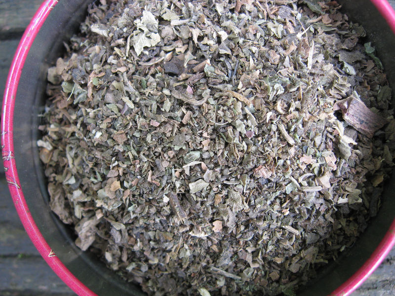 Patchouli Leaf, Organic,  Pogostemon cablin - product images  of