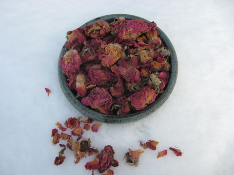 Red,Miniature,Rose,Buds,and,Petals,,genus:,Rosa,rose, rosa, rose petals, rose buds, roses, red roses, potpourri, flower petals, dried roses, dried petals, BrushCreekWoolWorks, Brush Creek Wool Works