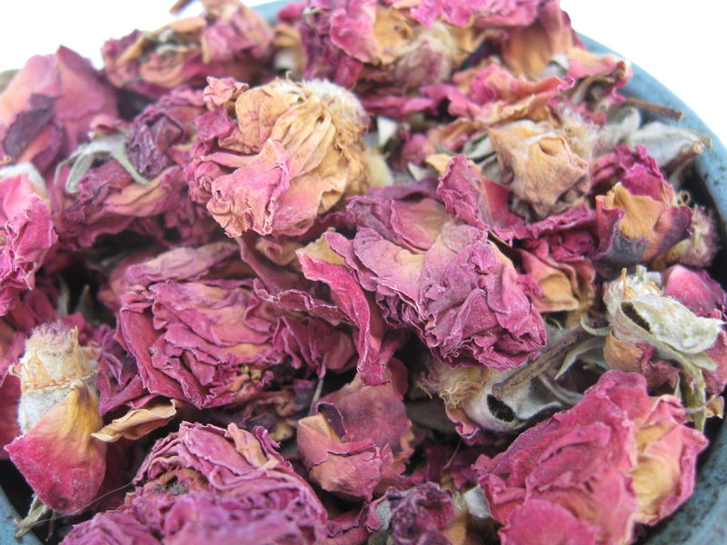 Red Miniature Rose Buds and Petals, genus: Rosa - product images  of